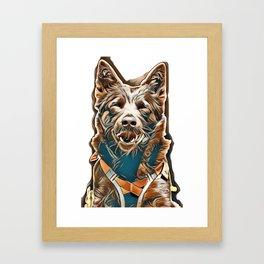 portrait of a Australian Kelpie Dog with rescue dog harness        - Image Framed Art Print