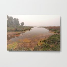 Misty Assateague Island Marsh Metal Print