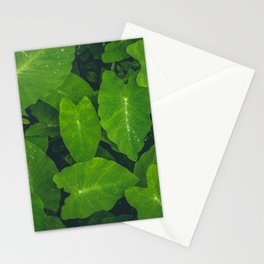 Beautiful green leaves in macro Stationery Cards