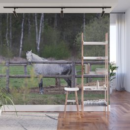 horse by Angelina Wall Mural