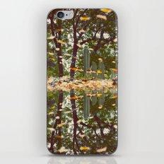 Grave Autumn iPhone & iPod Skin