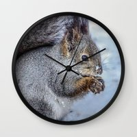 squirrel Wall Clocks featuring Squirrel by Svetlana Korneliuk