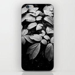 Monochrome Droplet iPhone Skin