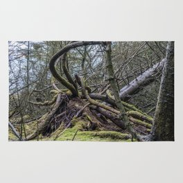 Fallen tree in Norway Rug