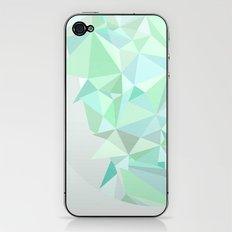 Circle 1 iPhone & iPod Skin