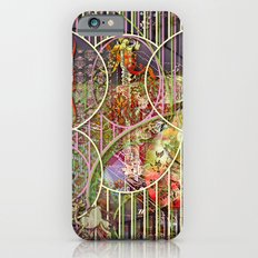 The Relative Frequency of the Causes of Breakage of Plate Glass Windows (1) iPhone 6s Slim Case