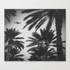 PLANE PALMS Canvas Print