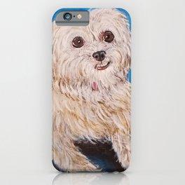 Shih Tzu Maltese Mix Dog Portrait iPhone Case