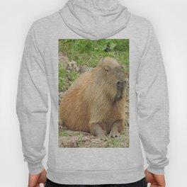 Capybara Hoody
