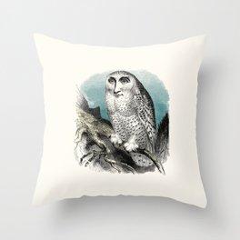 Wise man Throw Pillow