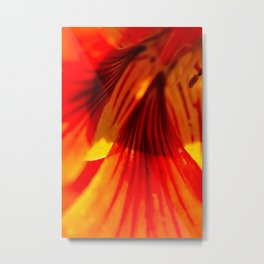 Botanical vortex Metal Print