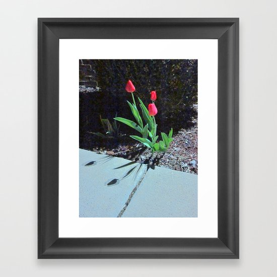 Three Red Tulips Framed Art Print