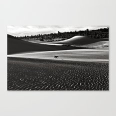Walking alone through the desert of life Canvas Print