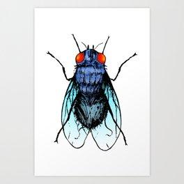 La mosca Art Print