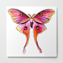 Pink Moth Metal Print