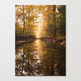 Forest 3 Canvas Print