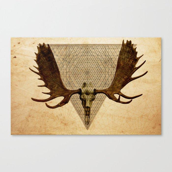 Anteocularis VI Canvas Print