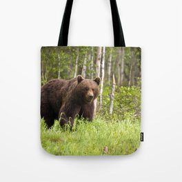 Amazing Huge Adult Grizzly Bear Strolling Proudly Across Wood Clearing Ultra HD Tote Bag