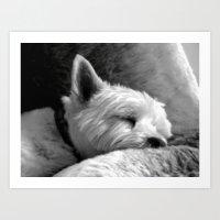 Dog Tired Art Print