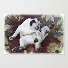 obscene cat Canvas Print