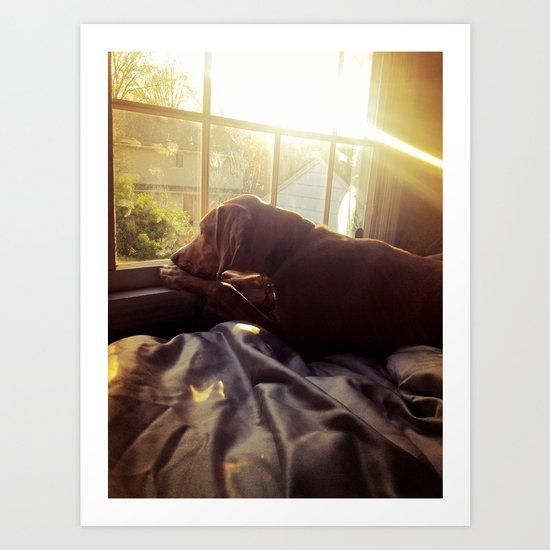 Sitting by the Evening Sun Art Print