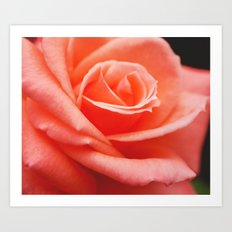 Peach Delight. Art Print