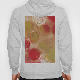 Abstract No. 341 Hoody