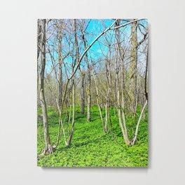 Spring in Stratford Metal Print