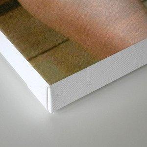 Brie 2 Canvas Print