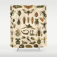 insects Shower Curtains featuring Insects by Connie Goldman