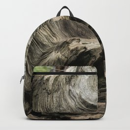 Etched by Nature Scarred by Man Backpack