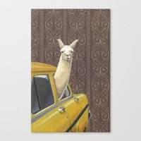 write Canvas Prints featuring Taxi Llama by Jason Ratliff