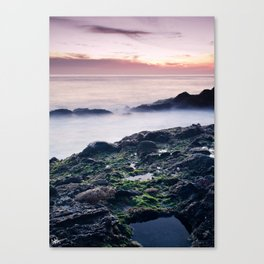Oceans of Foreign Life Canvas Print