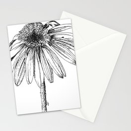 Echinacea Stationery Cards