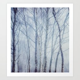 Mist In The Trees Art Print