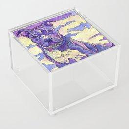 Rainbow Blue Nose Pitbull Acrylic Box
