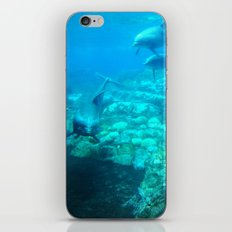 Under SeaWorld iPhone & iPod Skin