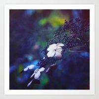 hydrangea Art Prints featuring Hydrangea by Nikita Gill