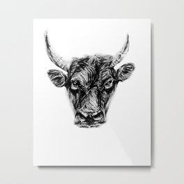 bull black and white  Metal Print