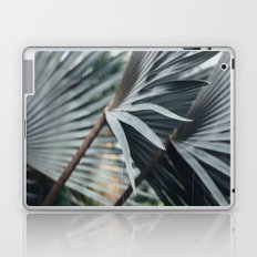 Palm Abstract Laptop & iPad Skin