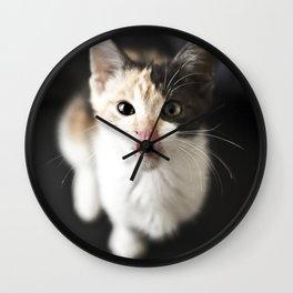 Kitty Noms Wall Clock