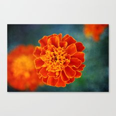 One in Orange Canvas Print
