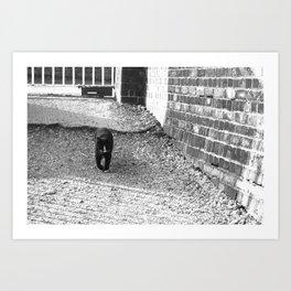 Railway Cat Greeting Art Print