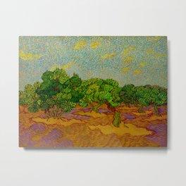 Olive Orchard November Oil Painting by Vincent van Gogh Metal Print