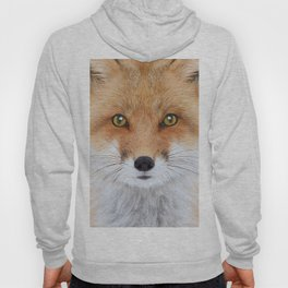 Fox Art Hoody