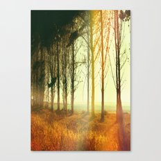 Secuencia. Canvas Print