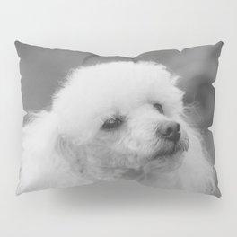 Toy Poodle Pillow Sham