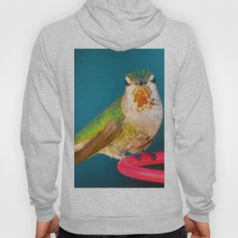 One of the Girls Hoody