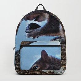Enjoying a Nut Backpack