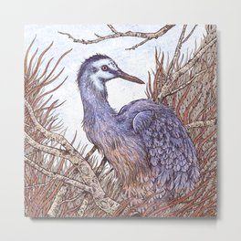 White Faced Heron Metal Print